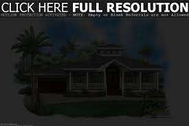 cottage style homes plans for zero lot lines bayou house small