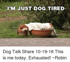 Tired Dog Meme - i m just dog tired dog talk share 10 19 16 this is me today