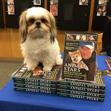 Barnes And Noble Elizabethtown Ky 33 Dog Friendly Stores