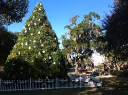 winter park christmas lights winter park christmas tree lighting in central park 2014 with