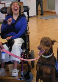 therapy dogs united about us