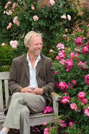 12 tips for designing beautiful rose beds hgtv