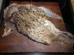 cuisiner une poule faisane recette de faisan braisé en choucroute avec une morteau