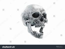 scary halloween white background title human scary skull locally deformed stock illustration