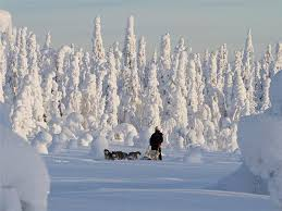 winter holidays winter sports winter holidays