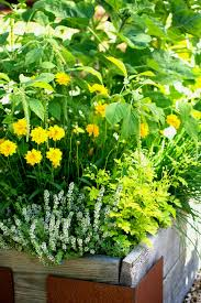 Ideas For Gardening Flower Bed Ideas Images About Gardening On Livingroom