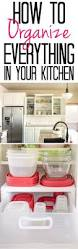 Kitchen Cabinet Organization Tips 152 Best Kitchen Organization Images On Pinterest Kitchen