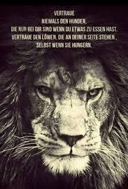 vertraue den löwen liebe der löwe vertrauen und löwin - Sprüche Löwe