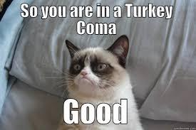 Grumpy Cat Coma Meme - grumpy cat memes quickmeme
