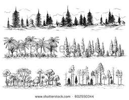 hand drawn tree stock images royalty free images u0026 vectors
