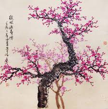 of china tree cherry blossom watercolor cherry