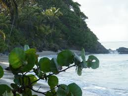 vacation home rentals in trinidad and tobago