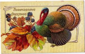 playle s vintage thanksgiving postcard turkey in his finery pre
