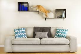 wall mounted cat stairs 100 wall mounted cat climber 878 best cat toys etc images