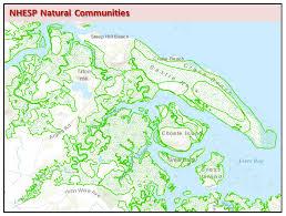 Massachusetts vegetaion images Massgis data nhesp natural communities jpg