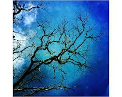 tim burton tree etsy