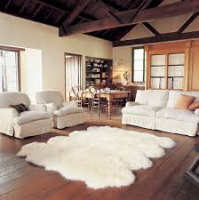 Shaped Area Rugs Shaped Rugs Home Design Ideas And Pictures