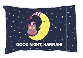 personalized pillow moon and owl personalized pillow baghound