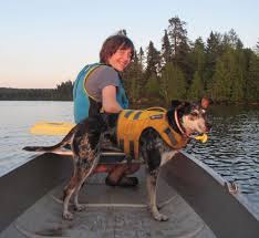 john muir dog quote bwca lost dog on basswood dog lost again in city of ely