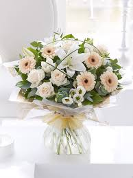 latest news and updates from go dutch florist galway city go