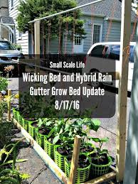 35 best rain gutter grow systems images on pinterest gardening