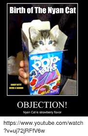 Objection Meme - birth of the nyan cat needsalaluohll objection nyan cat is
