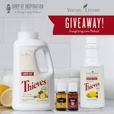 thieves cleaner and your healthy home young living essential