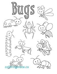 coloring pages insects bugs insect coloring pages insect coloring page insect coloring pages