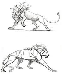 illustration u0026 web comics lion sketches