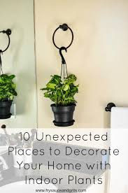 Home Interior Plants by 10 Unexpected Places To Decorate Your Home With Indoor Plants