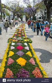 Madeira Flowers - carpet of flowers april flower festival funchal madeira