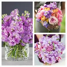 wedding flowers edmonton edmonton wedding flowers fresh gorgeous wedding flowers edmonton