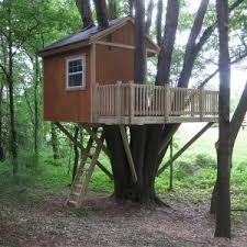 building your own tree house how to build a house columbus ohio tree house tree house pictures building tree