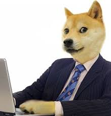 Meme Generator Doge - business doge caption meme generator