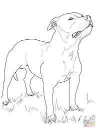 boston terrier coloring page jacb me