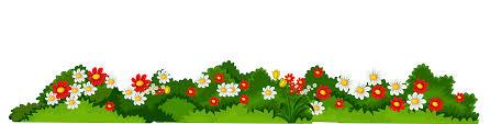 halloween borders transparent background transparent floral cliparts free download clip art free clip
