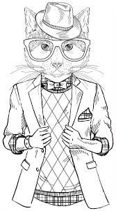 a cool cat from