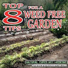 vegetable garden weed control vegetable garden weed control fabric