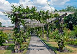 Lattice Pergola Roof by Pergola Wikipedia