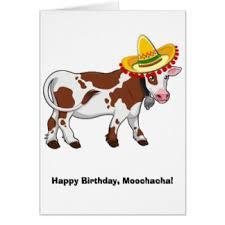 cow greeting cards happy birthday cow cards invitations zazzle au