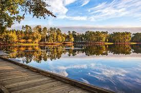 South Carolina landscapes images Residential landscape design good part south carolina idolza jpg