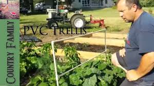 pvc trellis and tomato support youtube