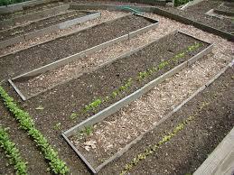 Garden Soil Types - garden soil rules for preparing your soil garden design