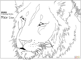 male lion head coloring free printable coloring pages