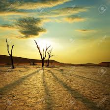 dead valley in namibia stock photo picture and royalty free image dead valley in namibia stock photo 8964679