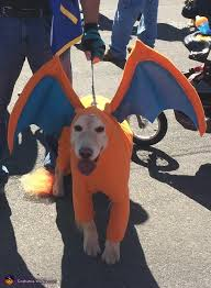 Charizard Halloween Costume 2016 Halloween Costume Contest Costume Works Gallery