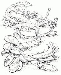 ocean animals coloring pages for kids inside beach coloring pages