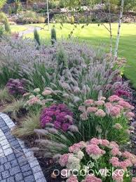 fabulous mix of ornamental grasses and other perennials grasses
