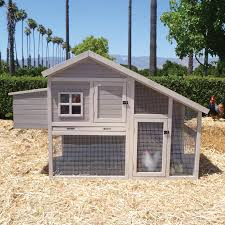 precision extreme cape cod chicken coop with nesting box and