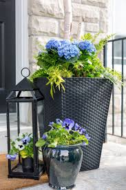 House Plant Ideas by Best 20 Front Door Planters Ideas On Pinterest Front Porch